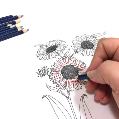 Pitt-pens-glaze-coloring-flower-carolyn-dube-15