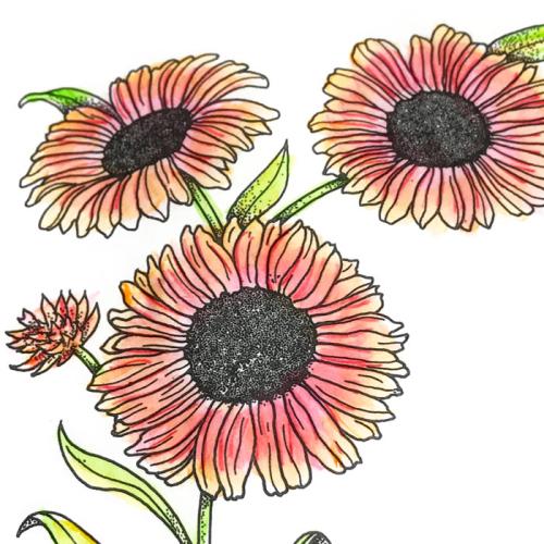 Pitt-pens-glaze-coloring-flower-carolyn-dube-12
